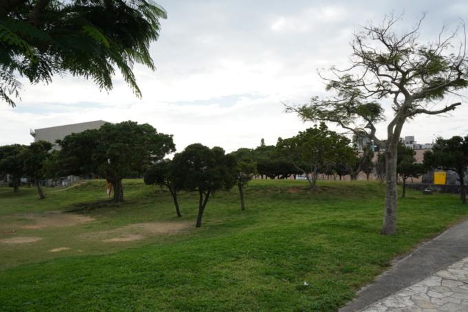 ちゅらまち公園8